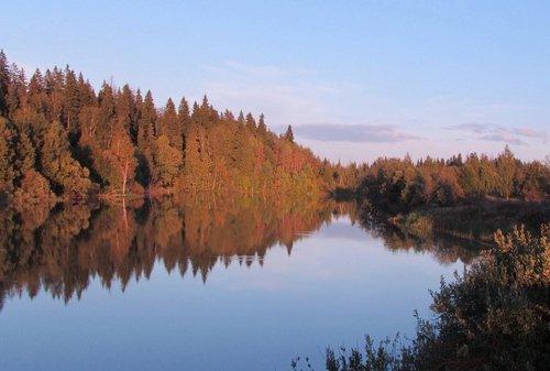 Осеннее безмолвие