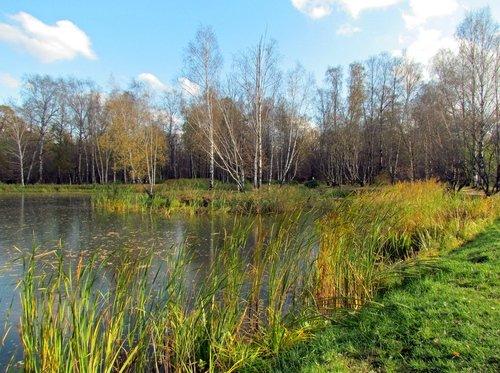 Осенний пейзаж октября