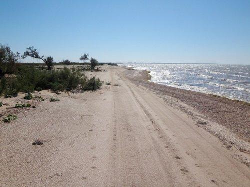 На прибрежных песках