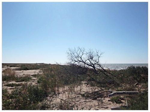 В походе, на Ясенской косе, Азовское побережье, сентябрь 2018 (6)