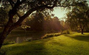 Утро в одном из парков Кёльна