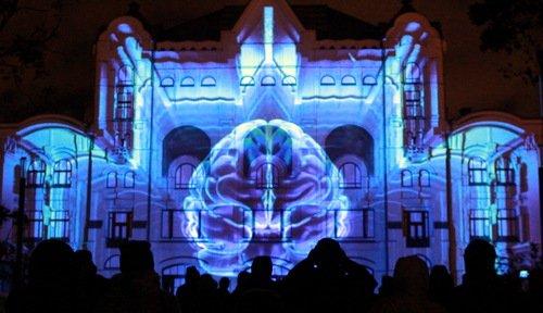 Научный Круг света: мозг