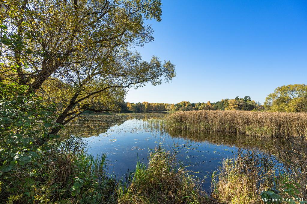 09. Мы на Экологической тропе - справа - приток (залив) Бездонного озера - точка 5 на Экологической тропе - вид вправо