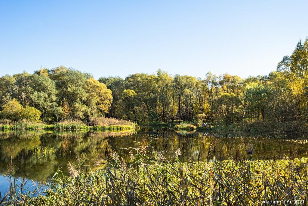 08. Точка 4 на Экологической тропе - вид влево от тропы - заводь Бездонного озера