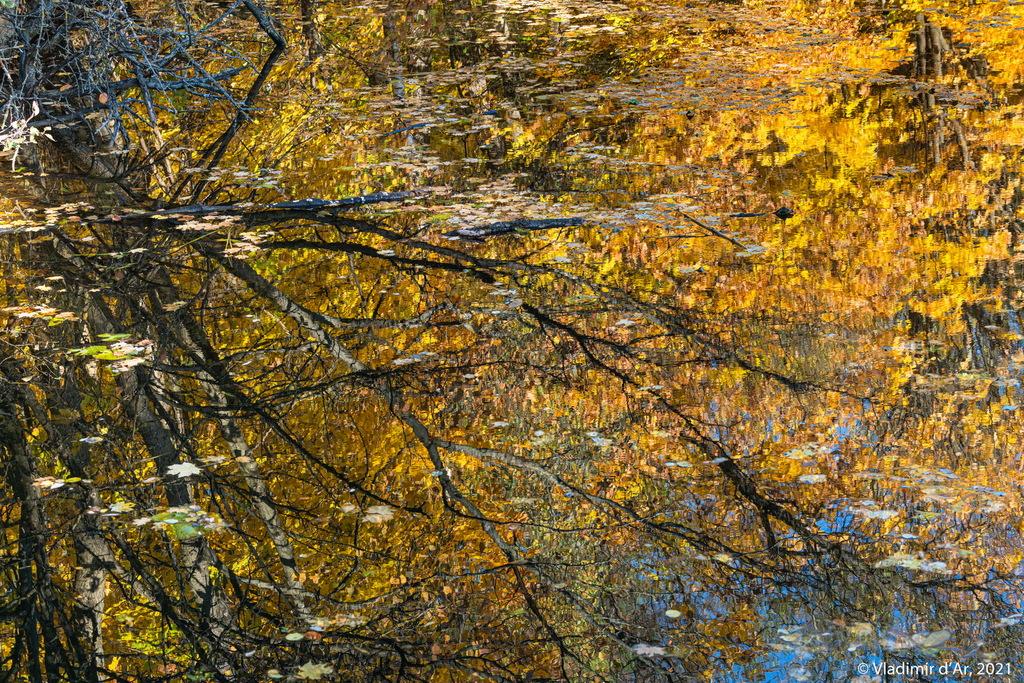 Серебряный Бор - Золотая осень
