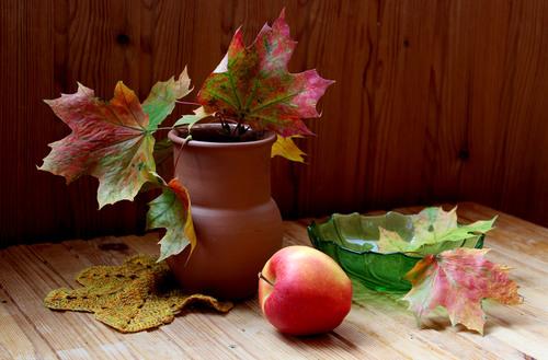 с кленовыми листьями и яблоком