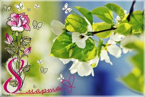 С праздником весны, милые подружки!