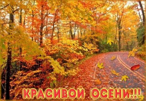 Красивой Осени!
