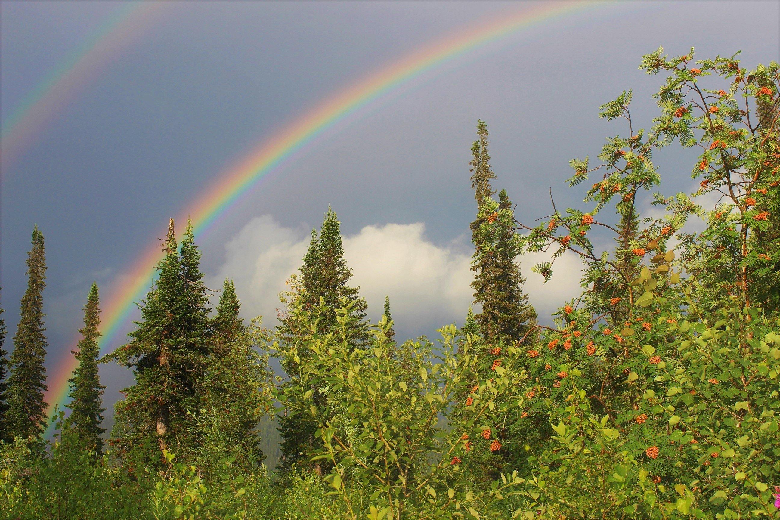 магазинов фото радуги после дождя предлагаем вам вспомнить