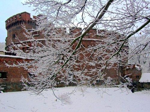 Зима и Врангель