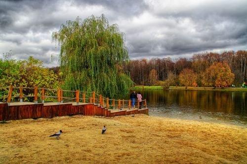 На Терлецких прудах октябрь