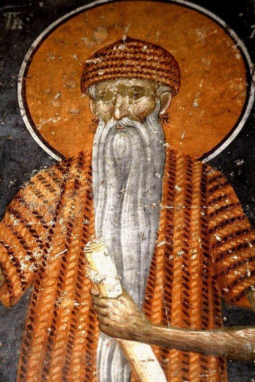 Святой Преподобный Павел Фивейский. Фреска монастыря Грачаница, Косово, Сербия. Около 1320 года.
