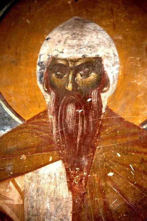 Святой Преподобный Павел Латрийский. Фреска монастыря Трескавац (Трескавец), Македония. XIV век.