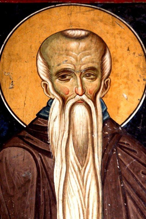 Святой Преподобный Евфимий Великий. Фреска Лесновского монастыря (Македония). XIV век.
