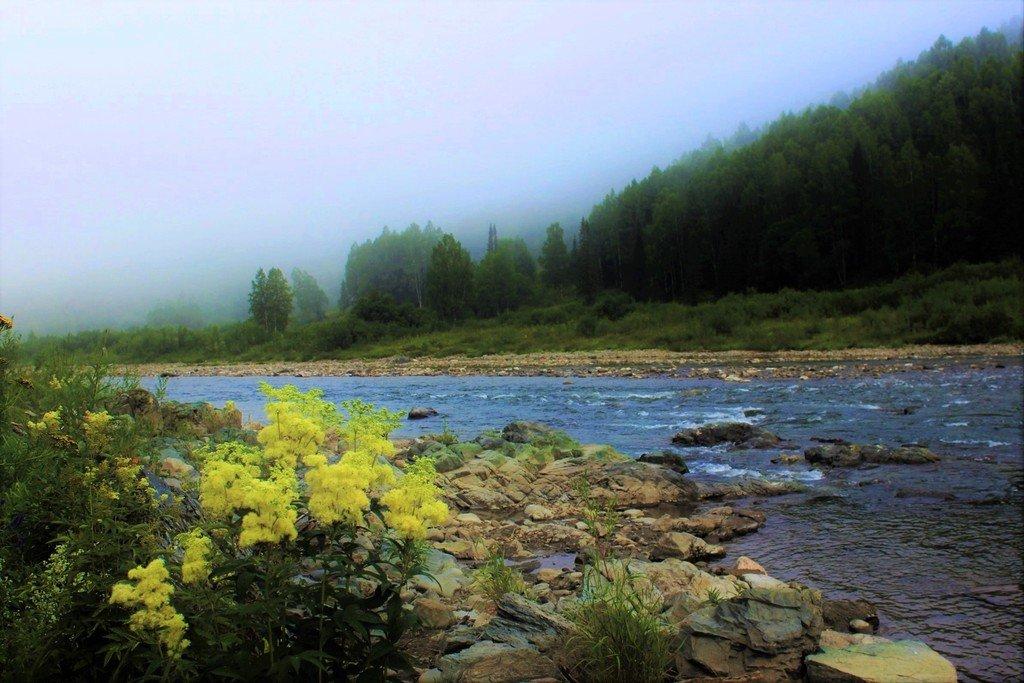 Туман над таёжной рекой