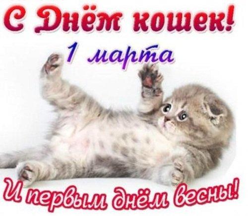 С ДНЁМ КОШЕК!!!