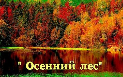 """ИТОГИ КОНКУРСА """"ОСЕННИЙ ЛЕС"""""""