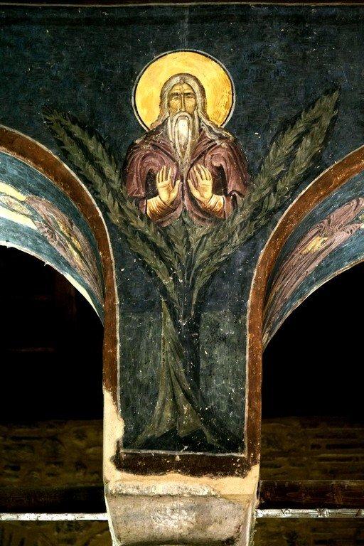 Святой Преподобный Давид Солунский. Византийская фреска в церкви Старая Митрополия в Верии, Греция.