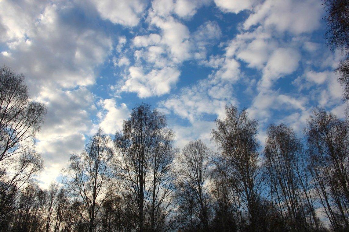 незамедлительно фото весеннего неба является это