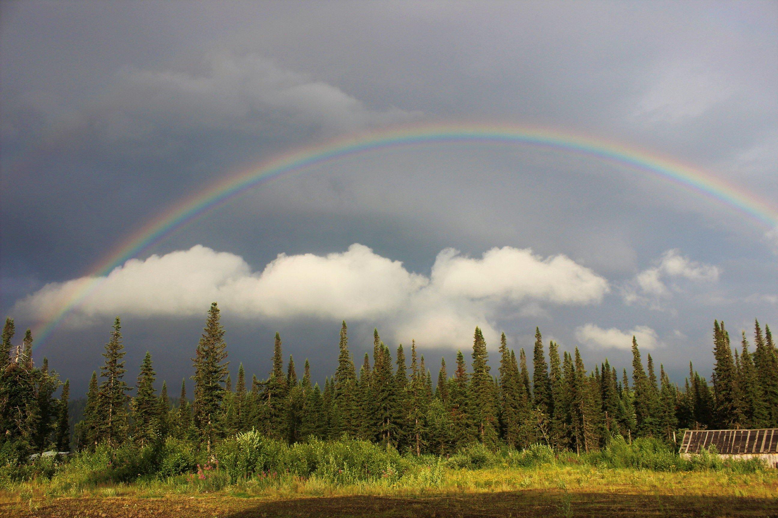 Картинки радуги дуги