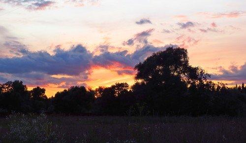 В закатном блеске пламенеет снова лето