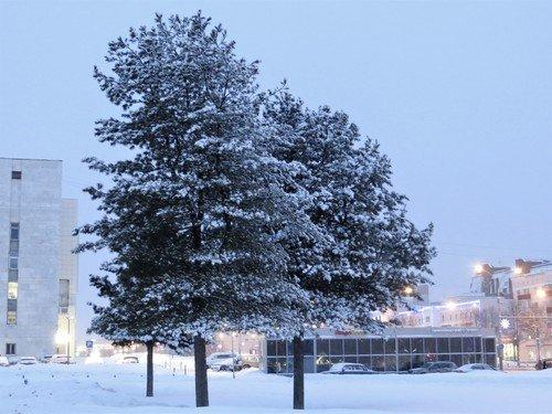 В городе снежно