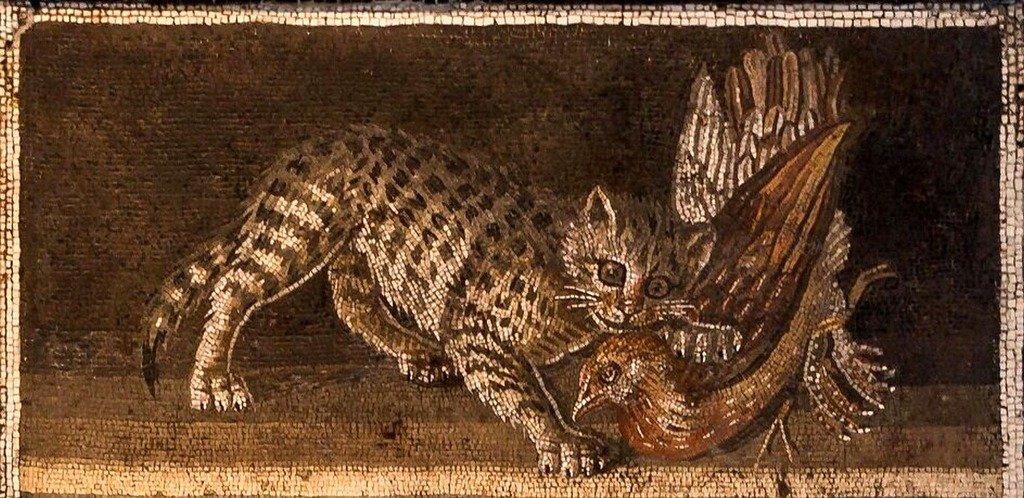 Древнеримская мозаика. Felis catus.