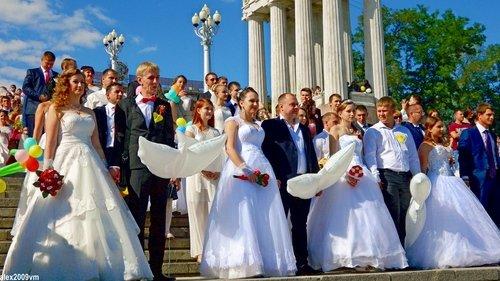 Парад молодожёнов в Волгограде
