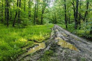 Непроезжий путь. :-)