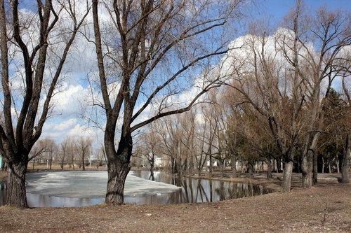 Парк в марте.