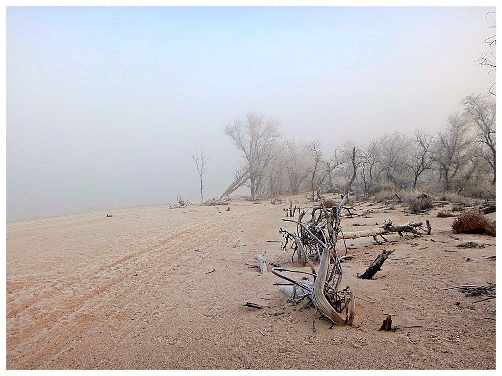 В походных условиях, Азовское побережье Кубани, ноябрь 2018, туризм 004