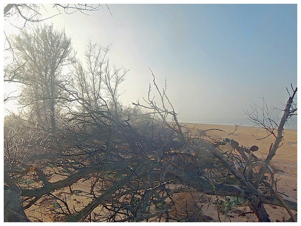 В походных условиях, Азовское побережье Кубани, ноябрь 2018, туризм 005