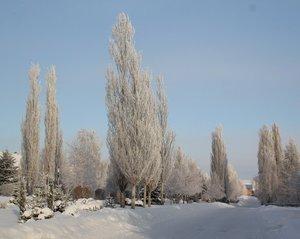 Вертикальная зима)
