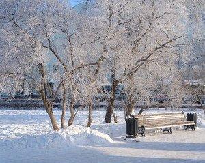 Прозрачный январь)