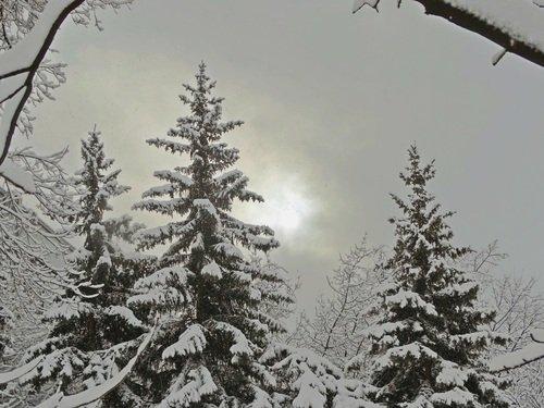 Зимний день.