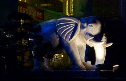 Китайский слон