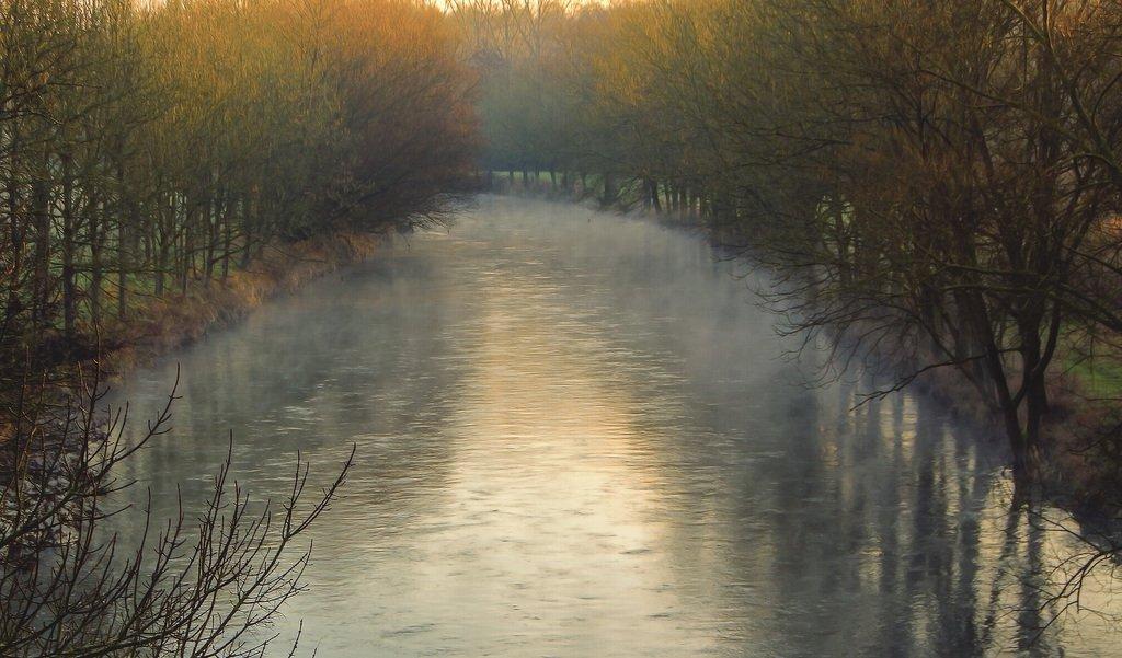 Утро на речке
