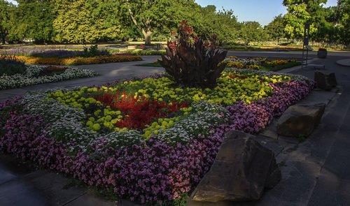 Цветы рейнского парка
