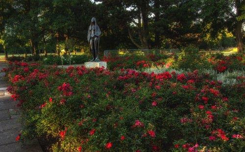 Хранительница роз