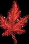 Осенние листья и ветки
