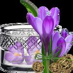 Первоцветы (ландыши, подснежники, крокусы и др)