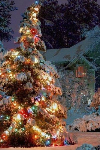 А над домами тихо шла Зима..
