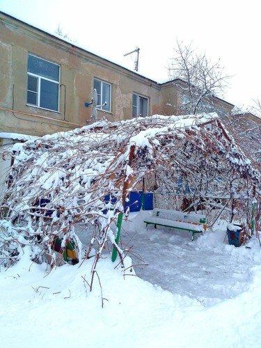 Снежно-виноградный козы́рек.